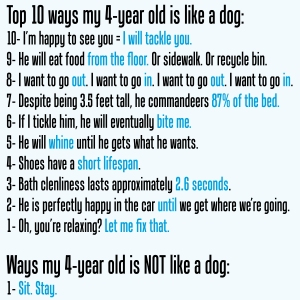 4 year old vs dog